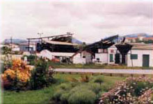 Historia de Almazara Ronda